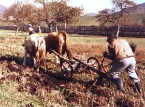 Itt nem államosították a földeket. Az elmúlt rendszerben is gazdálkodtak a helyiek, illetve kétlaki életmódot foly
