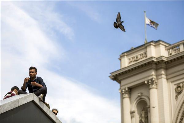 llegális bevándorlás - Migránsok a Keleti pályaudvarnál Szöveg:Budapest, 2015. szeptember 7. Galamb repül el egy migráns férfi mellett a Keleti pályaudvarnál 2015. szeptember 7-én. MTI Fotó: Mohai Balázs