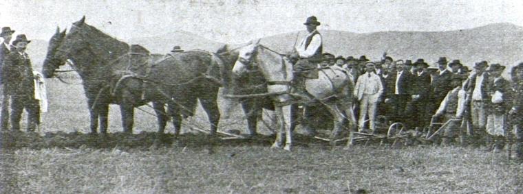 Őszi mélyszántás bemutatása kiránduló székely gazdáknak (Feketehalom, 1909)