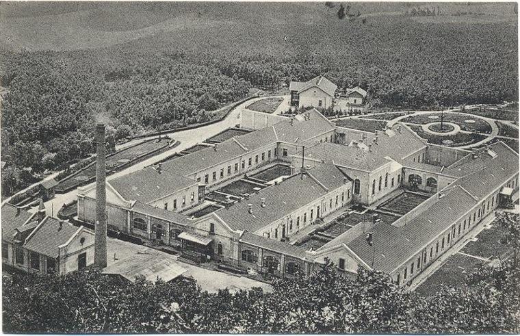 1892-ben Kún Kocsárd helyi földbirtokos alapítványt tett, amelyen a Földművelési Minisztérium és az EMKE földműves iskolát hozta létre, székely diákok számára, szarvasmarha-tenyészettel, fa- és gyümölcsfaiskolával. 1900-ban a korábban 40-es diáklétszámot 60-ra emelték föl. 1908-ban a magyar állam a településtől nyugatra, Csigmótól északra megnyitotta vasmunkás tüdőbeteg-szanatóriumát, amely ma is működik. 1921-ben az iskolát a földreform gyakorlatba ültetésével megszüntették, de a román állam később újraindította és jelenleg Alexandru Borza Mezőgazdasági Kollégium néven működik
