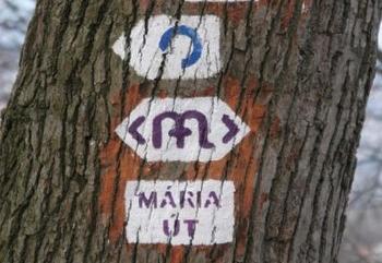 mariaut3
